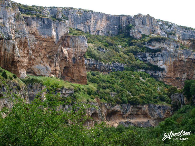 geomorfologia_foz_lumbier_red_natura2000_rio_irati_rapaces_habitats