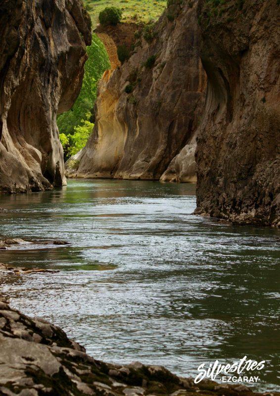 puente_diablo_foz_lumbier_ecoturismo_navarra