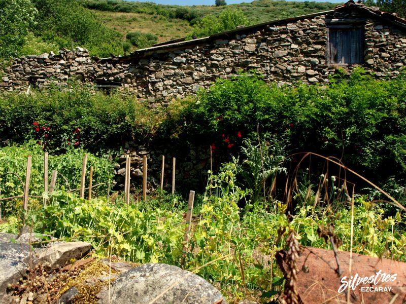 aldeas de ezcaray_rutas_senderismo_ayabarrena_grupos_turismo_que_ver