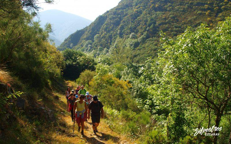 rutas por ezcaray_senderismo_ayabarrena_turismo_la rioja_silvestres