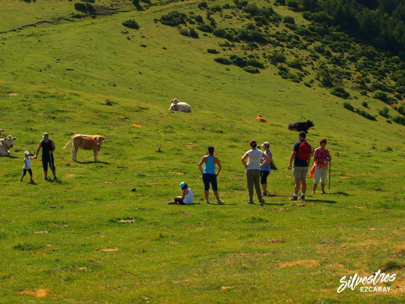 excursiones_senderismo_en_familia_familiares_la_rioja_ezcaray_sierra_de_la_demanda