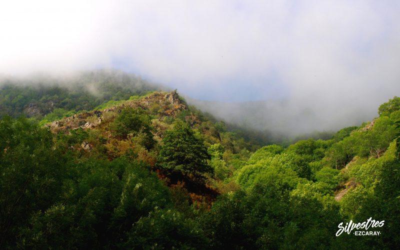 paisajes_ezcaray_minas_guirindoia_toponimia_vasca_historia_valle_oja_ruta_barranco_ortigal