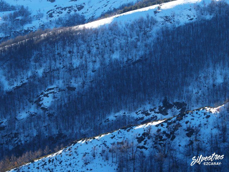 paisajes_alto_oja_guia_silvestres
