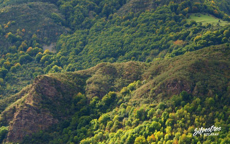 senderismo_en_ezcaray_rutas_paisajes_urdanta