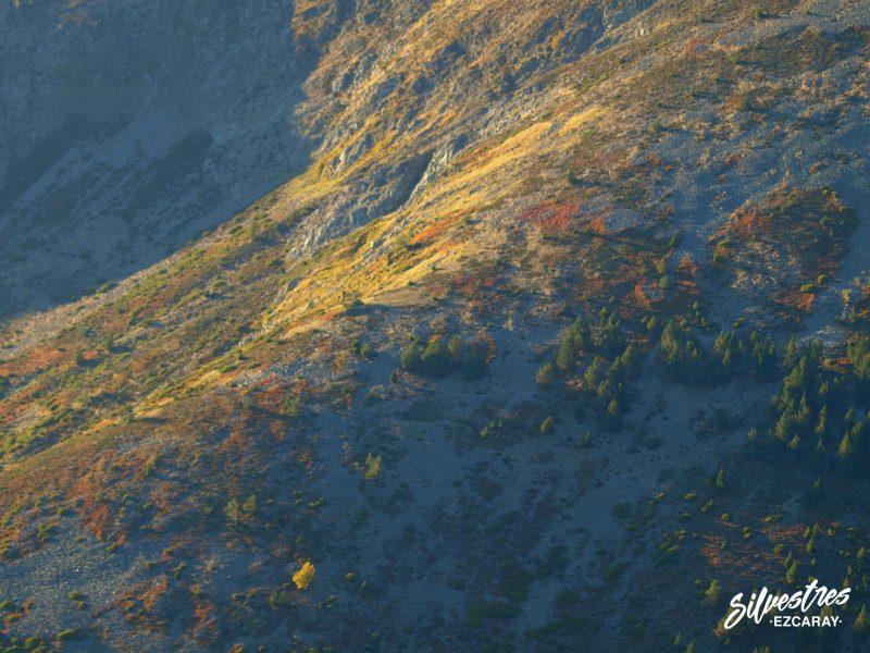 guia de montaña ezcaray
