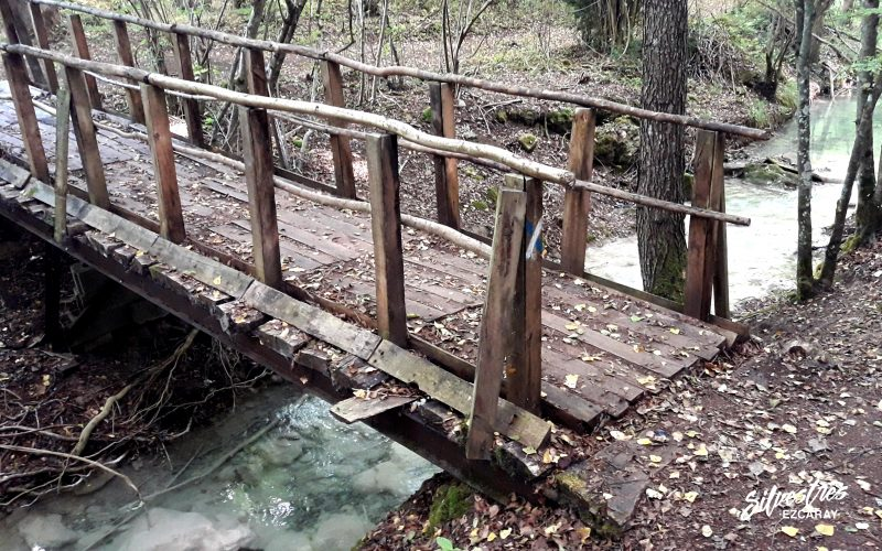 senderismo ruta agua silvestres ezcaray