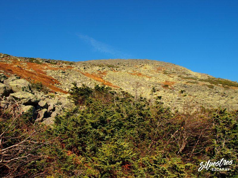 cima_monte_washington