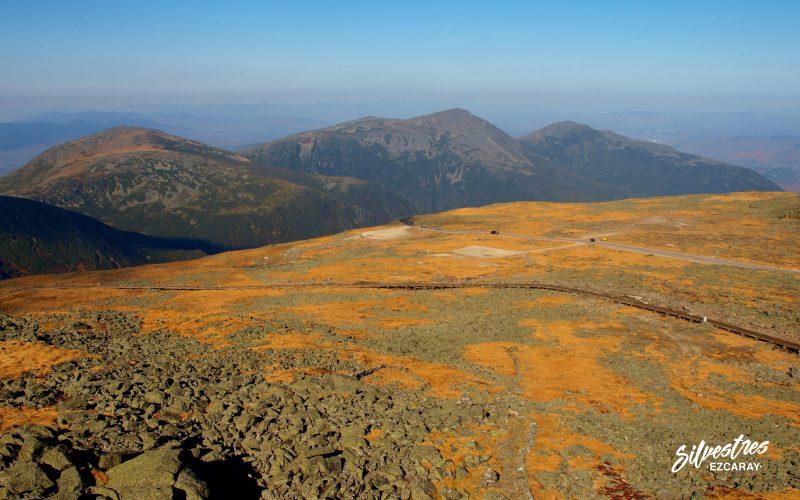 cordiellra_presidencial_white_mountains