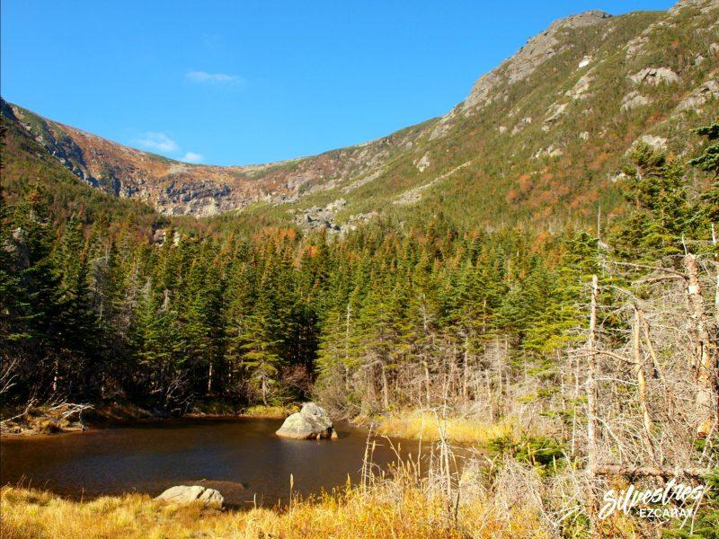 trekking_white_mountains