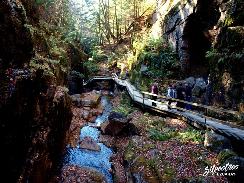 the_flume_gorge