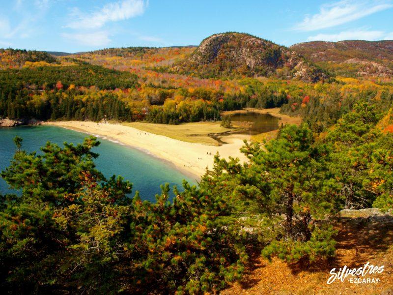 que_ver_en_acadia_sand_beach