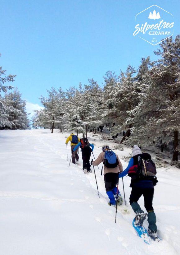 raquetas nieve ezcaray_rutas_pico_el hombre_empresas