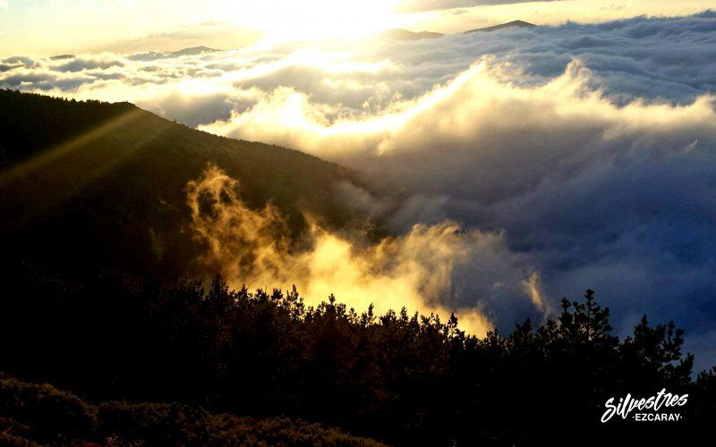 paisajes_ezcaray_naturaleza_las_mejores_vistas_berrea