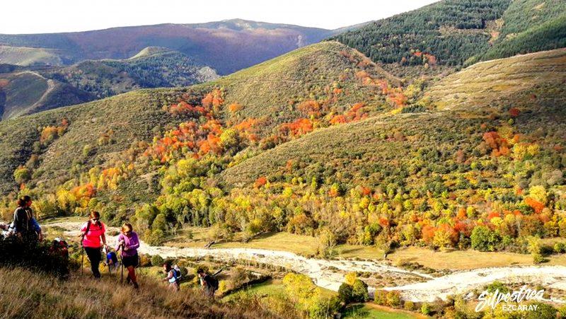 rutas_otoño_ezcaray_las_mejores_sendas_guia_montaña_paisajes_turismo_ecoturismo_la_rioja