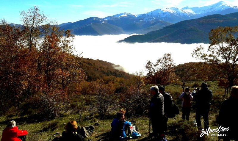 senderismo_otoño_paisajes_ezcaray_la_rioja_caída_hoja_fotografías_san_lorenzo_guia_silvestres