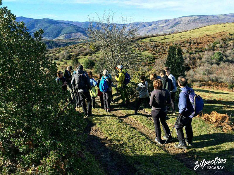 naturaleza_vida_silvestres_ezcaray_excursiones_didácticas_medio_ambientales