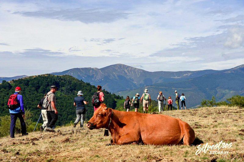 las_mejores_rutas_paseos_naturaleza_ezcaray_la_rioja_empresas_senderismo