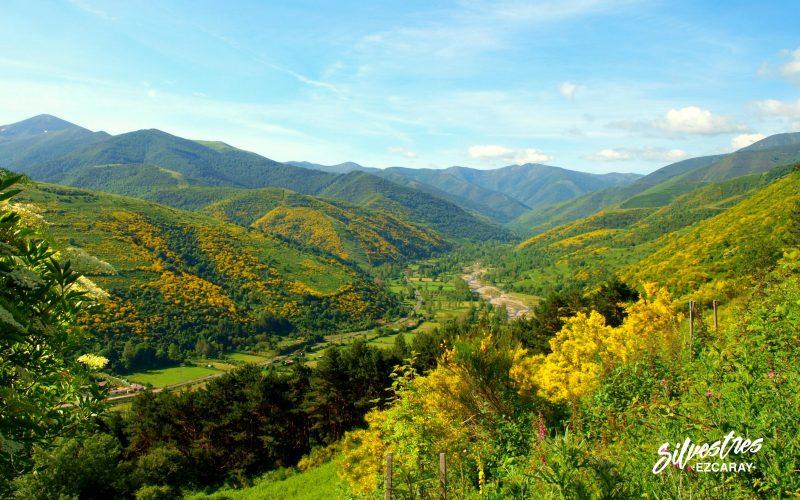 valle_alto_oja_ezcaray_sierra_demanda_la_rioja_panoramicas_silvestres