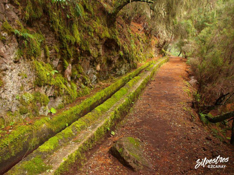 senderismo_por_el_mundo_islas_canarias_ruta_agua_ingenieria_hidraulica_historia