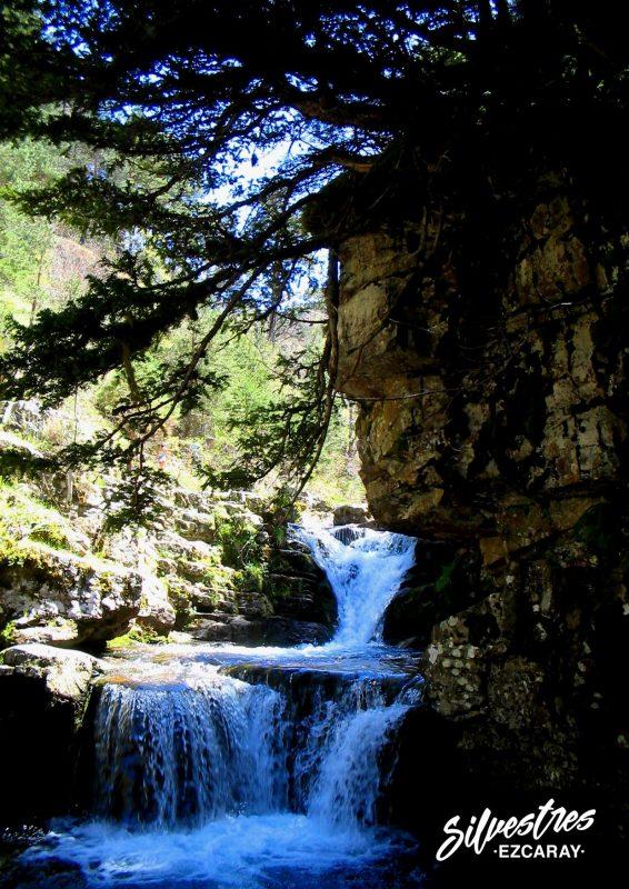 cascadas_puente_ra_que_ver_rutas_itinarerios_senderismo_paisajes_cebollera_cameros