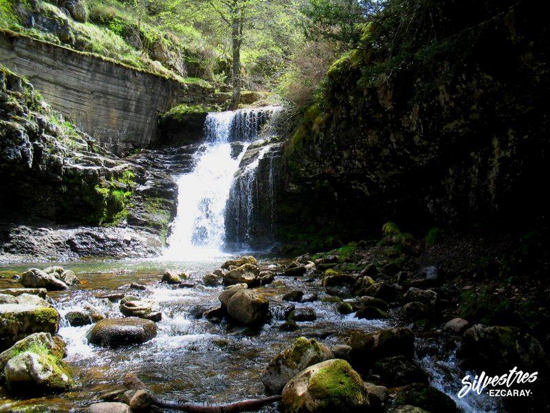 guia_montaña_empresa_servicios_la_rioja_sierra_cebollera_cascadas_puente_ra