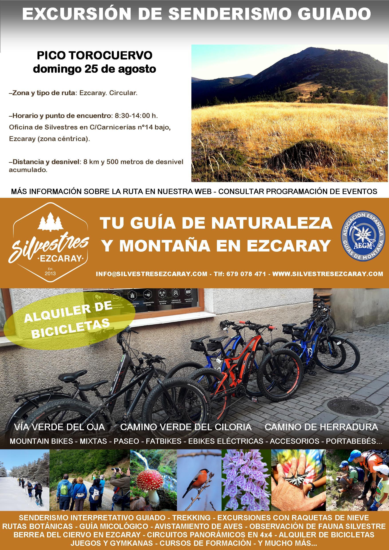 PICO_TOROCUERVO_MONTES_CUMBRES_SIERRA_DEMANDA_LA_RIOJA_GUIA_MONTAÑA