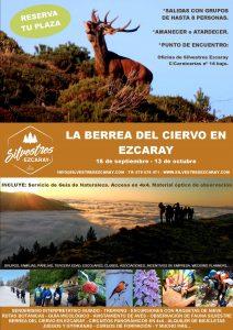 BERREA_CIERVO_EZCARAY_EXPERIENCIAS_OTOÑO_LA_RIOJA_ACTIVIDADES_GUIA_NATURALEZA