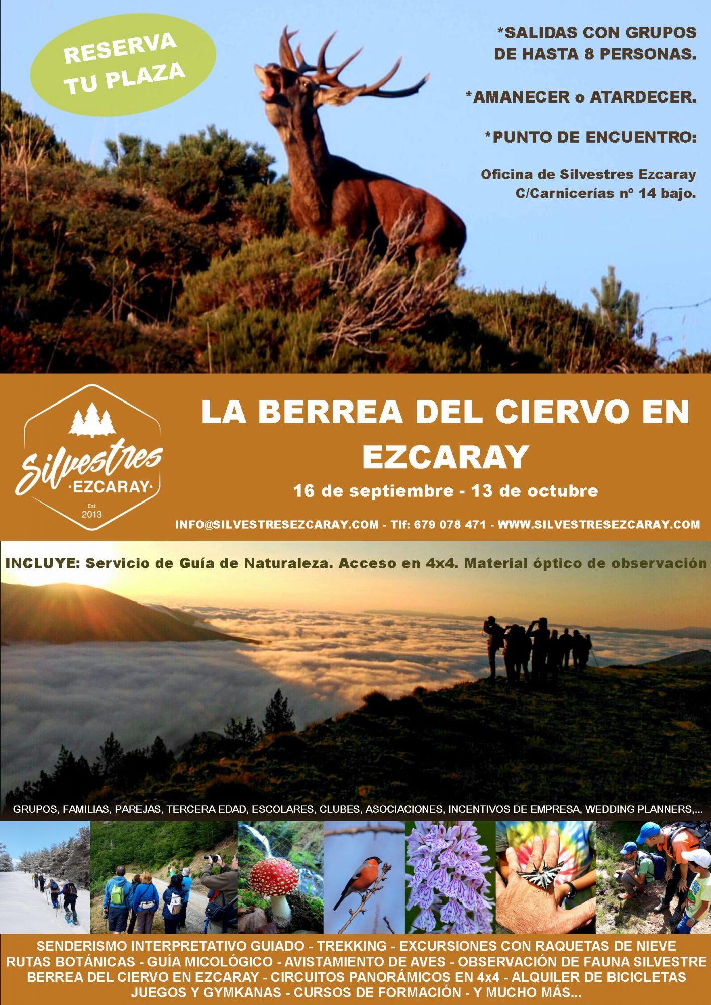 BERREA_CIERVO_EZCARAY_EXPERIENCIAS_OTOÑO_LA_RIOJA_ACTIVIDADES