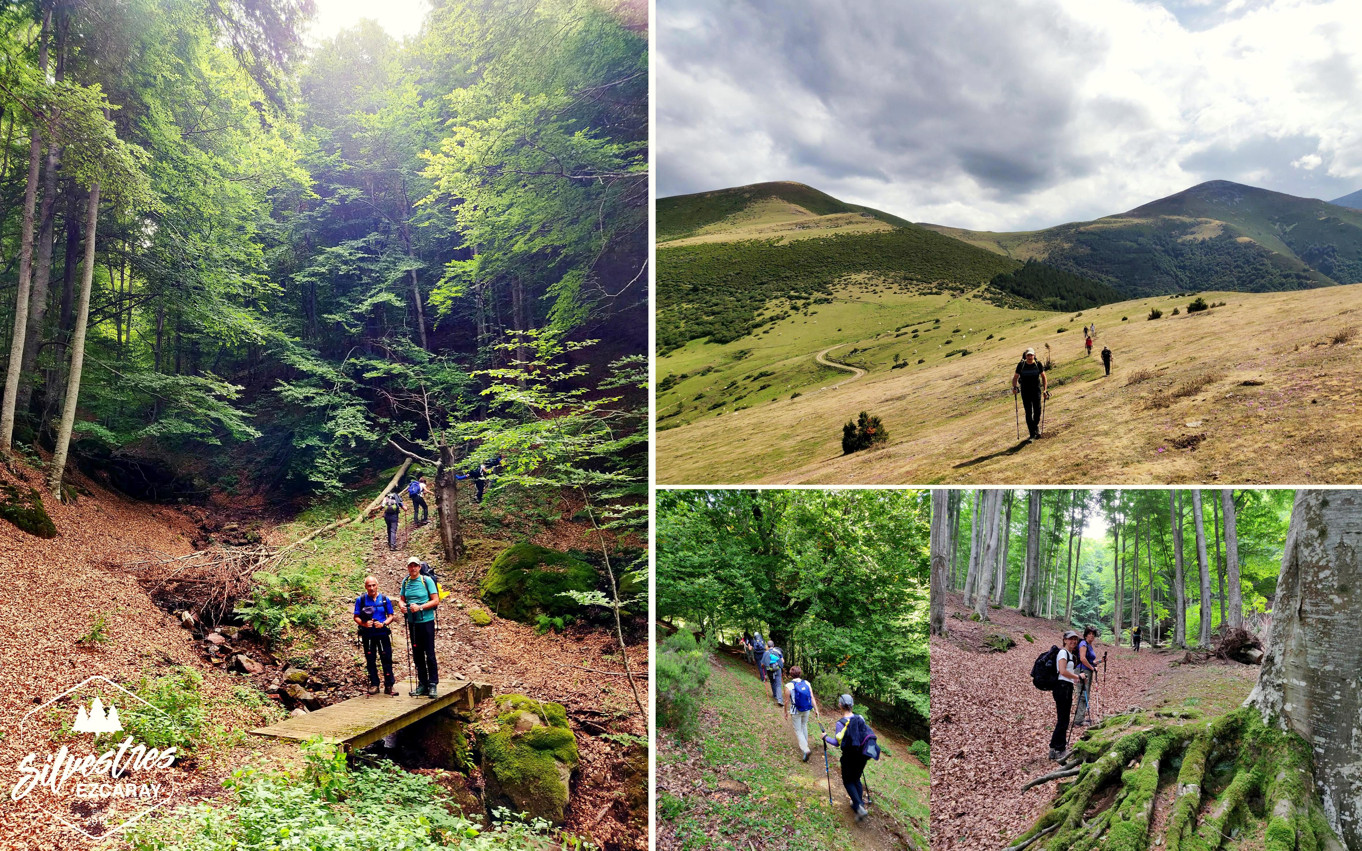 trekking_monasterios_la_rioja_san_millan_cogolla_valvanera_experiencias_guia_montaña_empresa