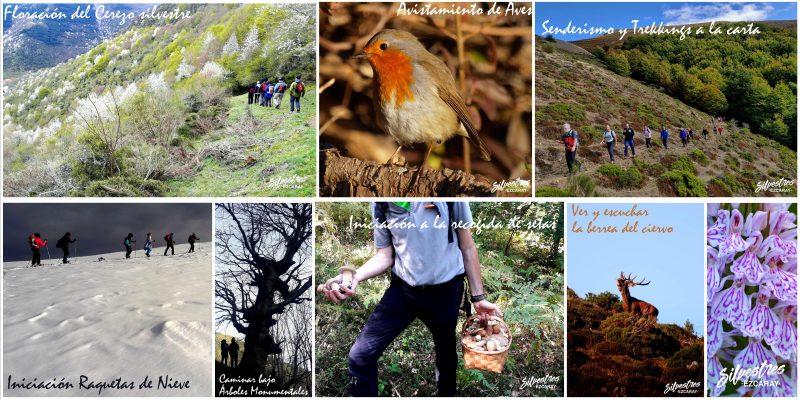experiencias_cheques_regalo_cajas_la_rioja_ezcaray_naturaleza_ecoturismo