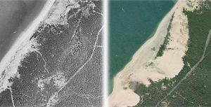 evolucion_duna_pilat_reforestaciones_estabilización