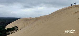 subir_ascender_gran_duna_francia_excursiones_que_ver_landas
