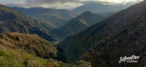 paisajes_montes_montañas_alto_najerilla_barranco_riguelo