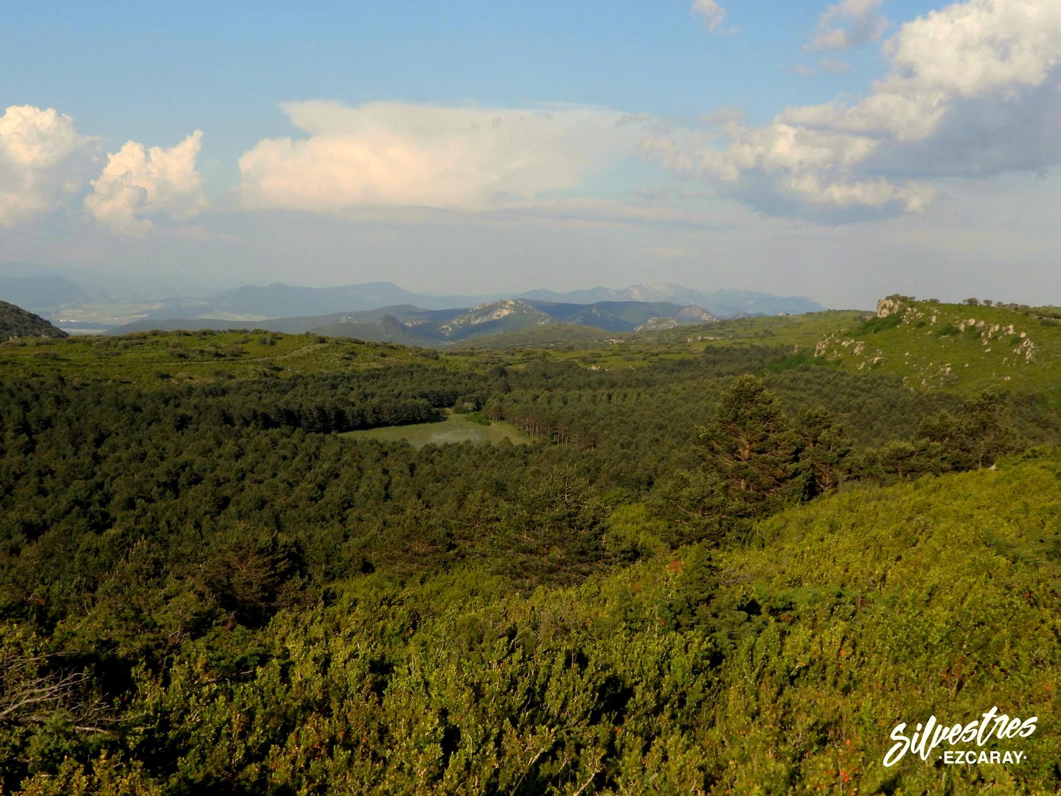laguna_monte_paisaje_foncea_obarenes_riojanos_zonas_interés_guia_silvestres_ezcaray